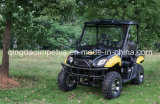 Hot Sale 5kw 2-Seat Electric UTV