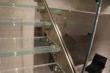Escadaria de vidro do aço inoxidável com as longarinas do aço inoxidável/em linha reta escadaria de vidro