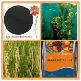 Estratto solubile in acqua dell'alga di 100%, fertilizzante organico