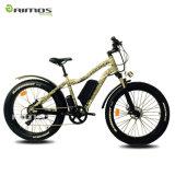 48V 1000W 기어 모터 26inch 뚱뚱한 타이어 전기 자전거