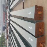 Structure légère préfabriquée de bâti en acier