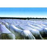 Landbouw Zwarte Plastic Film