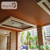 Soffitto materiale del comitato WPC della scheda del PVC della decorazione esterna di alta qualità