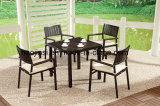 Alumínio ao ar livre/do jardim/Patio/Rattan/& tabela HS7108dt-2 de Polywood