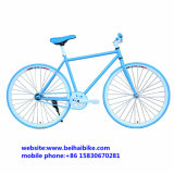 새로운 디자인 싼 700c 조정 기어 자전거