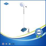외과 LED 검사 빛 (YD01-I LED)를 서 있는 최신 판매