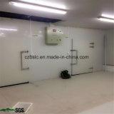 Cámara fría, conservación en cámara frigorífica, piezas de la refrigeración para el alimento y carne