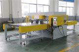 Embalagem em blister Double-Side automática máquina de corte hidráulico