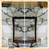 Jade Olay laje de mármore branco para ladrilhos e escadas