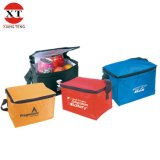 Non Woven Insulated Cooler Bag for Food, Insulated Picnic Bag
