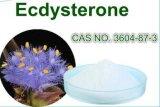 Ecdysterone/Ecdysone 20%, 50%, 98% durch HPLC/UV Cyanotis Arachnoidea Auszug Ecdysterone CAS Nr. 3604-87-3