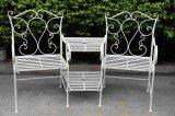 Antiwhiteのベンチが付いているFoldable金属の椅子