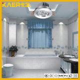 Petite lumière de Cabninet/plafonniers chauds du blanc 3X1w DEL