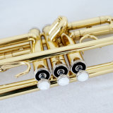 Qualitäts-goldene Trompete für Verkaufbb-Ton Brasswind Instrument