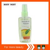 Marque Body Mist 89ml Parfum du corps de l'hôtel Splash