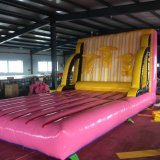PVC Tarpaulin Inflatable Toy (sport of games)