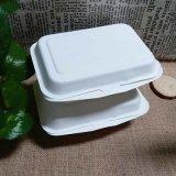 Emporter divisé la nourriture contenant des boîtes de déjeuner bento de bagasse biodégradable
