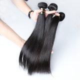 Cheveux humains vierge 100 % Cheveux raides brésilien de la trame