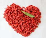 Baya secada certificada orgánica de Goji con precio competitivo