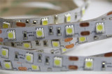 Venta caliente con la tira de la iluminación del alto brillo LED del precio de fábrica
