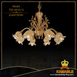 Латунные со стеклянным оформлением роскошный дом настенный светильник (ТБ-0935-2)