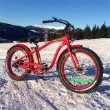 500W Bafun 후방 허브 모터를 가진 Ebike 또는 전기 자전거 또는 전기 자전거