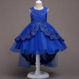 Общность новых цветов типа 6 первая одевает платья девушок цветка