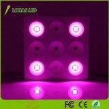 200W 400W 600W 800W 1200W 1600W 1800W LEDのプラントライト穂軸の反射鏡シリーズ7バンドLEDはHydroponic温室植物Vegおよび花のために軽く育つ