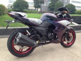 オートバイのバイクを競争させる200cc 2シリンダー