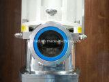 L&B 고압 점성 쌍둥이 나선식 펌프 풀 펌프 (2.5MPa)