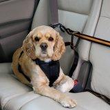 조정가능한 애완 동물 차 차량 Zipline 개 안전 벨트 가죽끈