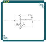 Colpetto d'ottone dell'acquazzone del doppio di memoria di ceramica termostatica dei fori