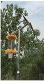 Lanterna solare della lampada dell'assassino di uccisione del parassita di insetto di vendita calda
