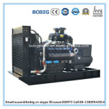 مصنع مباشرة كهربائيّة مولّد مجموعة مع [شنس] [كنغوو] إشارة ([400كو/500كفا])