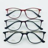 De nieuwe Frames van de Oogglazen Eyewear van het Staal van de Manier Plastic Optische met de Tempel van het Metaal