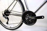 Bom preço Mountain / Bicicleta de fitness (FX6.3-6)