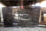 Mattonelle di marmo nere dorate delle lastre di Pasargad