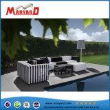 Venta caliente de un diseño simple mobiliario piscina sofá