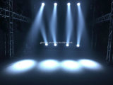 Commerce de gros ! Bonne qualité 19pcsx15W RGBW DMX LED de commande de déplacement Head Wash Light/ Faisceau de LED Le déplacement de la tête de zoom
