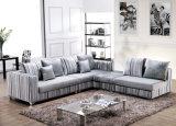 Hauptmöbel-Sofa (F8040-2)