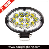 12V 7 Flut-Punkt-Träger des Zoll-36W ovale CREE LED Arbeits-Lampe für LKW-Schlussteile
