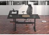 Home Furniture Sit Stand Bureau d'ordinateur dans la salle d'étude