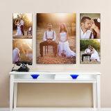 Foto di alta risoluzione su ordinazione della stampa di tipografia di arte della parete del collage della foto su tela di canapa