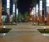 Pelouse lumière LED (DZ-CS-112) de l'éclairage décoratif de plein air IP65