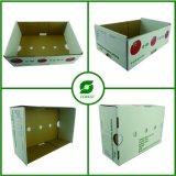 Branco de boa qualidade personalizado de vegetais e frutos Caixa de papelão, envio/movendo a bandeja de frutas