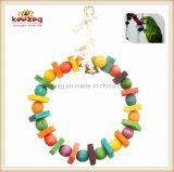 Деревянный любимчик Toys игрушки /Bird для играть любимчика (KBB002)