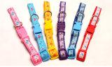 애완 동물 제품 개 고양이 강아지 다채로운 고리 (C012)