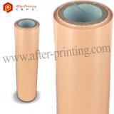 Pigmento y lámina para gofrar caliente de Pealized para la tarjeta