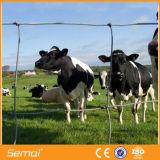Rete fissa del campo del bestiame galvanizzata commercio all'ingrosso alla rinfusa del metallo