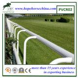 Rete fissa poco costosa del cavallo di alta qualità, rete fissa del vinile